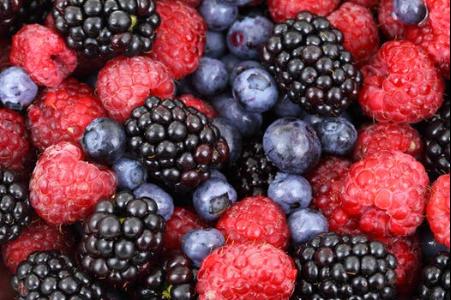Make Organic Fertilizer at Home (6)
